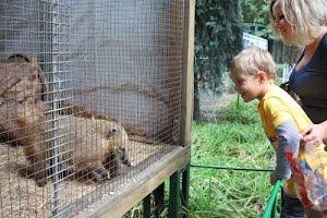 Одесский зоопарк отметил день рождения