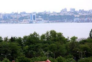 Как сохранить Черноморскую экосистему?